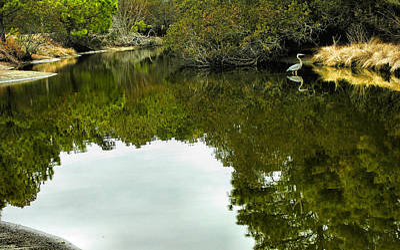 Marsh Stream I Print by Steven Ainsworth