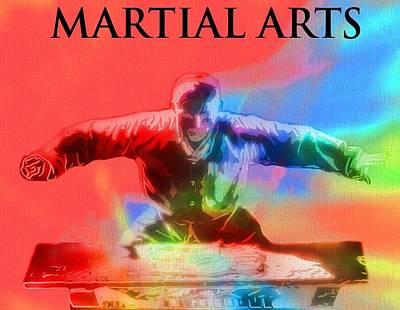 Mixed Martial Artist Digital Art - Martial Arts Pop Art Poster by Dan Sproul