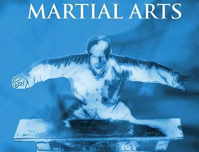 Mixed Martial Artist Digital Art - Martial Arts Poster by Dan Sproul