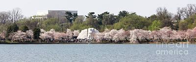Martin Luther King Memorial 1079 Print by Jack Schultz
