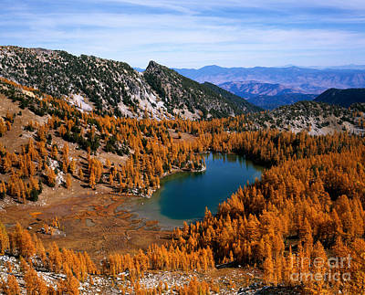 Martin Peak And Cooney Lake Print by Tracy Knauer