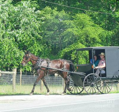 Horse Farm Maryland Photograph - Maryland Horse Carriage by Ted Pollard
