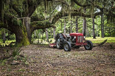 Farm Photograph - Massey Ferguson - Live Oak by Scott Hansen