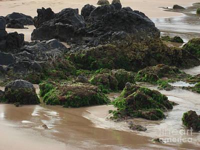 Hawaii Photograph - Maui Moss Rocks by Deborah Smolinske