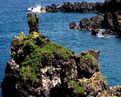 Rose Photograph - Maui Shoreline #4 by J D Owen