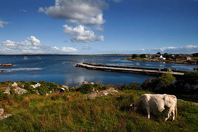 Connemara Photograph - Maumeen Quay, Gorumna Island by Panoramic Images