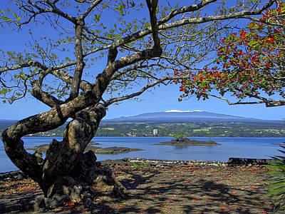 Mauna Kea Volcano Over Hilo Bay Hawaii Print by Daniel Hagerman