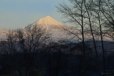 Mt. Massive Photograph - Mclaughlin Late Winter Day by Mick Anderson