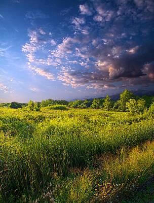 Meadow Print by Phil Koch