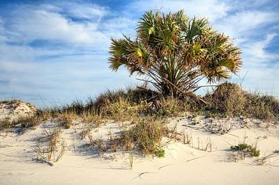 Pensacola Beach Photograph - Meanwhile Somewhere In Florida by JC Findley