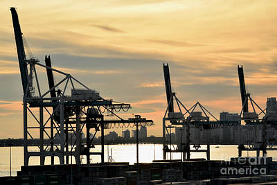 Mechanical Arms In Morning Light Print by Gary Smith