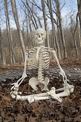 Human Skeleton Photograph - Meditative Moods Color by Betsy Knapp