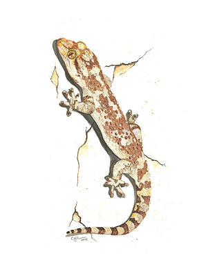 Gecko Painting - Mediterranean House Gecko by Cindy Hitchcock