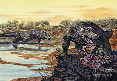 Megalania Giant Monitor Lizard Eating Print by Mark Hallett