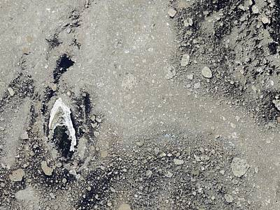 2012 Photograph - Melting Arctic Sea Ice by Nasa Earth Observatory