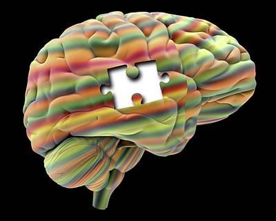 Mental Health Photograph - Memory Loss by Alfred Pasieka