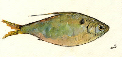 Menhaden Fish Print by Juan  Bosco