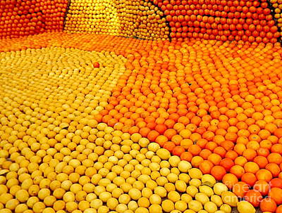 Menton Photograph - Menton Citrus Festival by France  Art