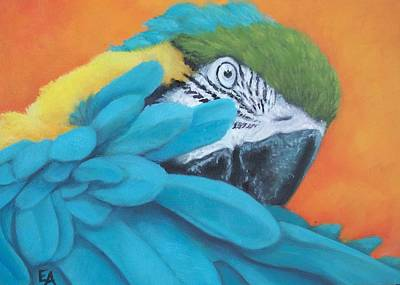 Blue And Gold Macaw Painting - Merlin The Macaw by Elizabeth Elgin