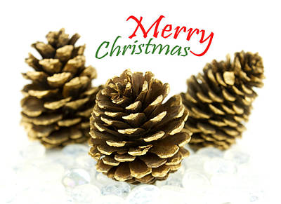 Pine Cones Photograph - Merry Christmas by Blink Images