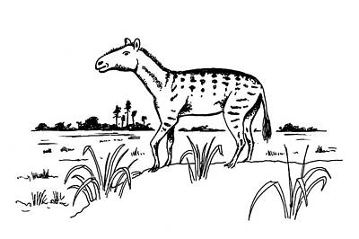 Mesohippus Prehistoric Horse Print by Richard Bizley