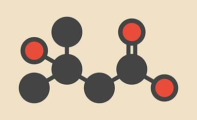 Catfish Photograph - Metabolite Molecule by Molekuul