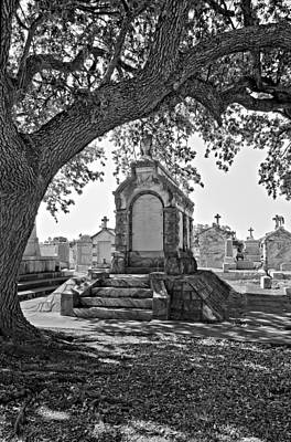 Oak Photograph - Metairie Cemetery Monchrome by Steve Harrington