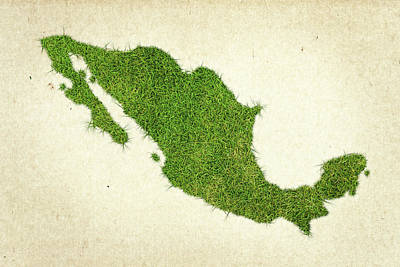 Save Mixed Media - Mexico Grass Map by Aged Pixel