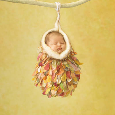 Nest Photograph - Mia by Anne Geddes