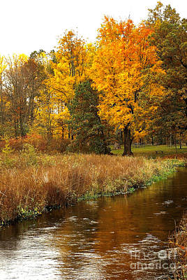 Michigan In The Fall Print by Gary Richards