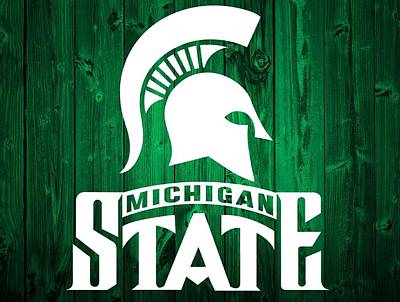 Michigan State Mixed Media - Michigan State Barn Door by Dan Sproul