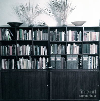 Midcentury Modern Bookcase Fade Original by Diane Phelps