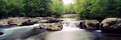 Middle Prong Of Little Pigeon River Print by Panoramic Images