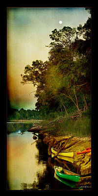 Middle Suwannee Pano Print by Linda Olsen
