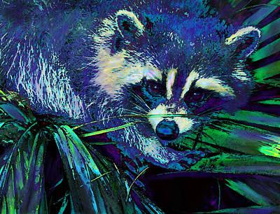 Midnight Racoon Print by Jane Schnetlage