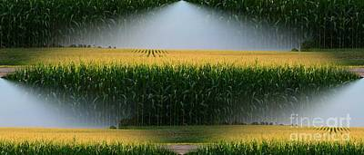 Cornfield Digital Art - Midwest Gold by Luther   Fine Art