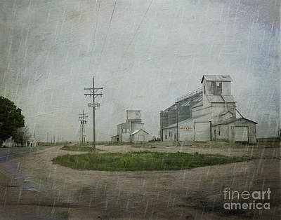 Telephone Poles Photograph - Midwest Prairie Feed Grain by Juli Scalzi