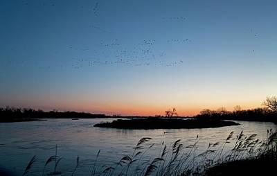 Migratory Birds Print by Jim West