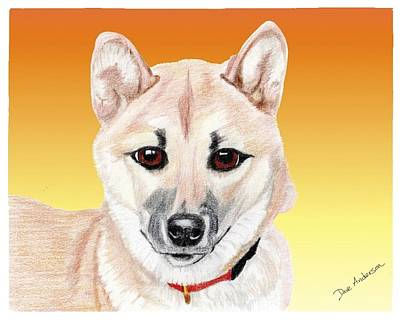 Animal Shelter Drawing - Mikey A Former Shelte Sweetie by Dave Anderson