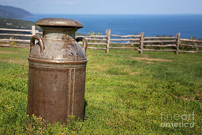 Delivering Photograph - Milk Churn by Jane Rix