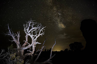 Juniper Photograph - Milky Way Over Arches National Park by Adam Romanowicz