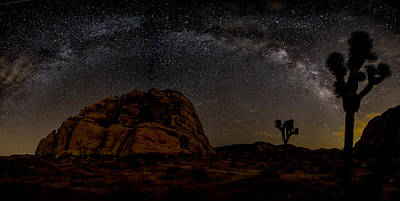 Milky Way Over Joshua Tree Print by Peter Tellone