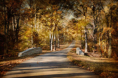 Autumn Scenes Photograph - Mingling With Beauty by Jai Johnson