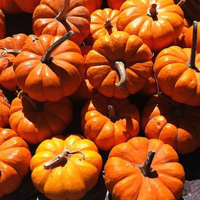 Mini Fall Pumpkins Print by Denyse Duhaime