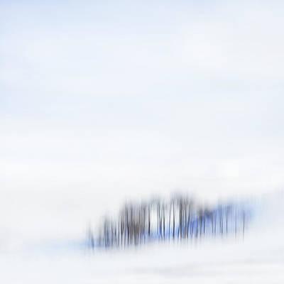 Kamloops Photograph - Minimal Trees by Theresa Tahara