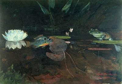 Mink Pond Print by Celestial Images