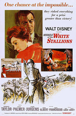 Miracle Of The White Stallions, Us Print by Everett