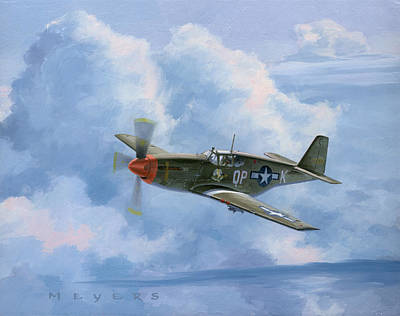 Spitfire Painting - Miss Dallas by Wade Meyers