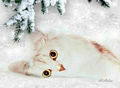 Cute Cat Mixed Media - Mistletoe In The Snow by Morag Bates