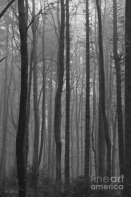 Misty Forest Print by Joanna Cieslinska